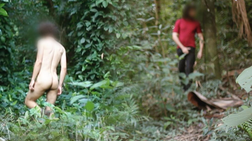 brazil jungle imagens antonio da silva films